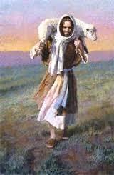 Jesus Sheep 1