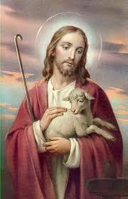 Jesus Sheep 2