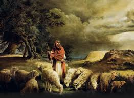 Jesus Sheep 3