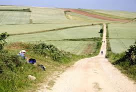 Pilgrim Path Horizon
