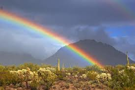 Rainbow Desert 2